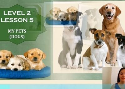 Level 2 Lesson 05: Pets in my home