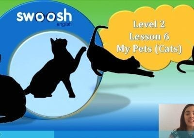 Level 2 Lesson 06: Pets in my home