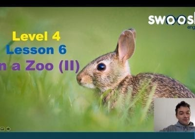 Level 4 Lesson 06: In a Zoo II (Birds)