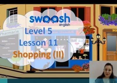 Level 5 Lesson 11: Shopping II